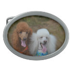 Pair of Poodles Oval Belt Buckle