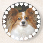 Papillon Dog Coasters