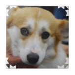 Pembroke Welsh Corgi Tile