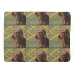 Really Cute Airedale Terrier Baby Blanket
