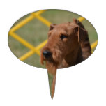 Really Cute Airedale Terrier Cake Topper