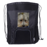 Resting Havanese Dog Drawstring Backpack