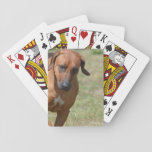 Rhodesian Ridgeback Prancing Playing Cards
