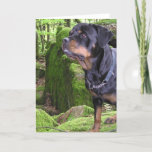 Rottie Pup Greeting Cards