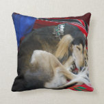 saluki-1.jpg throw pillow