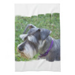 Schnauzer Kitchen Towel