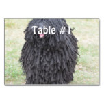 Shaggy Puli Dog Table Number