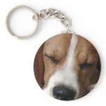 Sleeping Beagle Keychain