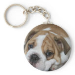Sleeping Bulldog Keychain