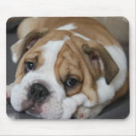Sleeping Bulldog Mouse Pad