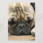 Sleeping Pug Invitation