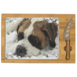 St Bernard Dog Cheese Platter