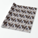 St Bernard Wrapping Paper