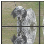 Sweet Black and White English Setter Fabric