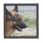 Sweet German Shepherd Dog Keepsake Box