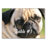 Sweet Pug Dog Table Number