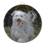 Sweet Sheepdog Dartboard With Darts
