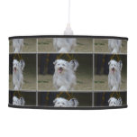 Sweet Sheepdog Pendant Lamp
