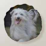 Sweet Sheepdog Round Pillow