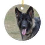 Sweet Shiloh Shepherd Ceramic Ornament