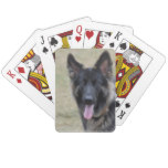 Sweet Shiloh Shepherd Playing Cards