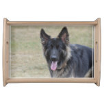 Sweet Shiloh Shepherd Serving Tray
