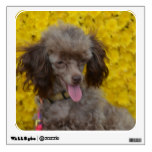 Sweet Tiny Brown Poodle Wall Sticker