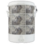 Sweet Weimaraner Beverage Cooler