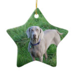 Weimaraner Lovers Ornament