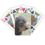 Wire Haired Daschund Dog Bicycle Playing Cards