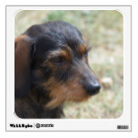 Wire Haired Daschund Dog Wall Decal