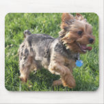 York Terrier Dog Mouse Pad