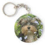 York Terrier Keychain