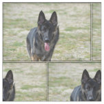 Young German Shepherd Fabric